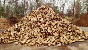 seasoned-firewood